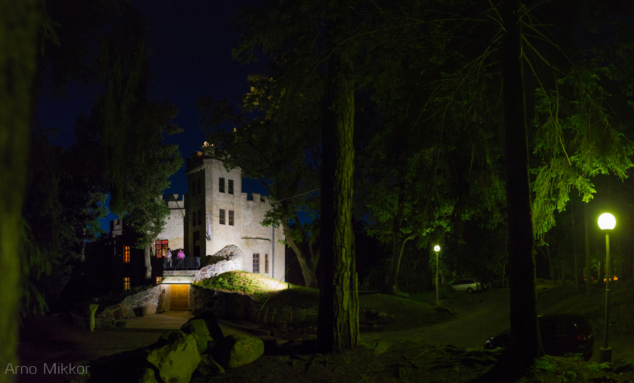 Pulmapidu Glehni lossis, pulmafoto